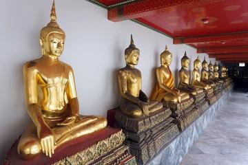 golden buddha row