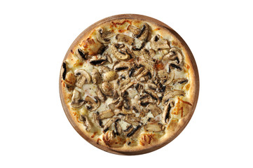 Funghi Solo pizza