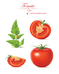Vector illustration. Tomatoes.