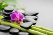 Fototapeten,blume,orchid,spa,zen