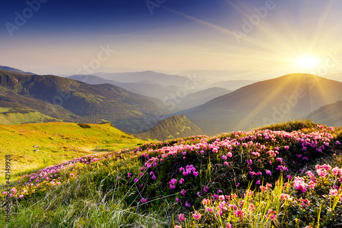 mountain landscape - 42149928