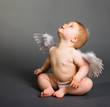 Infant Baby With Angel Wings O...