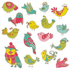 Colorful Birds Doodle Collection - hand drawn in vector - for de