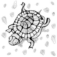 turtle ocean wild silhouette