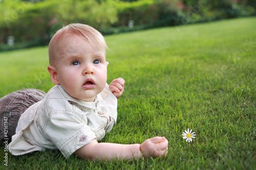 Baby auf dem Gras mit der Kamille