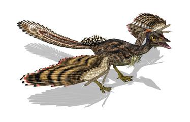 Archaeopteryx - Prehistoric Bird