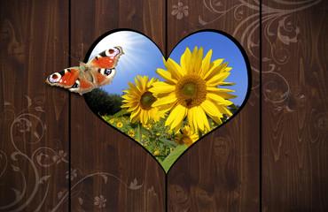 Herzloch in Holzwand mit Schmetterling und Sonnenblumen