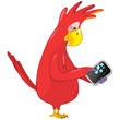 Funny Parrot. Tablet User .