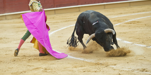 Recibiendo al toro con el capote.