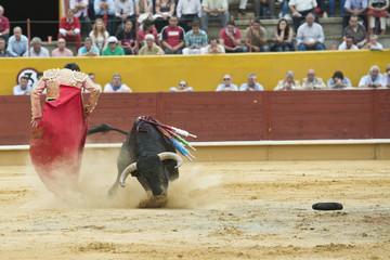 El toro entrando a un pase de molinete.