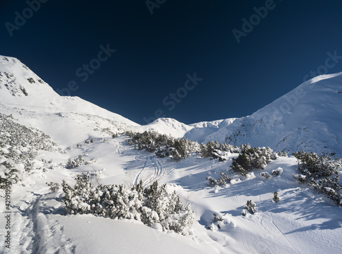 White blue winter scenery