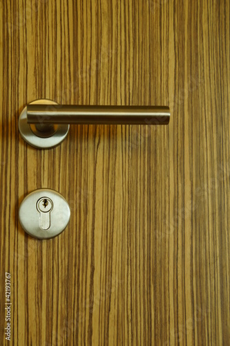 Wooden Door with Modern Knob