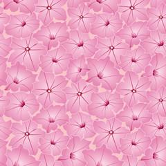 бесшовный фон из розовых цветов петунии, обои, Print