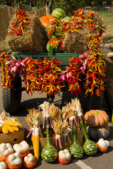 A harvest cart with autumn vegetables