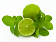 limes and mint isolated on a white background