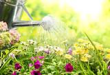 Fototapety Gardening