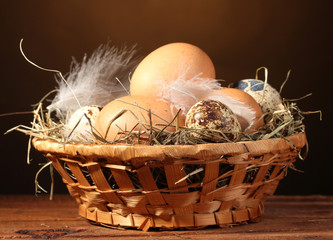 chicken and quail eggs in a nest