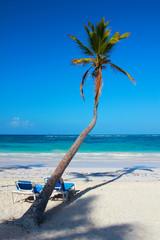 Bermuda Beach Indulge