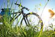 Leinwandbild Motiv Trekkingbike Pause im Gegenlicht