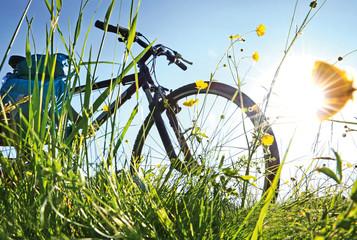 Trekkingbike Pause im Gegenlicht