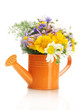 bouquet of wildflowers in watering can isolated on white