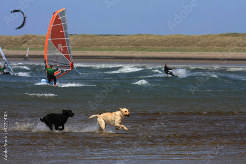National Windsurfing Championships