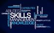 Skills management knowledge ability tag cloud illustration