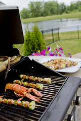 Mediterranean FishSkewers and Lobster