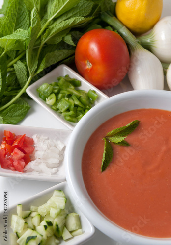Gazpacho and ingredients