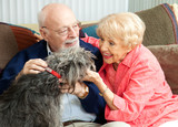 Seniors at Home with Their Dog - Fine Art prints