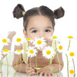 little girl with daisies on white