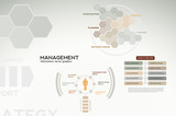 Management infographics - icons, graphs, charts and statistics