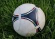Постер, плакат: Футбольный мяч лежит на траве