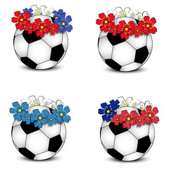 Soccer balls with floral national flags