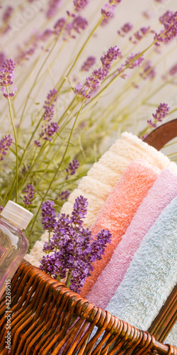 Lavender in spa