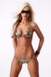Sexy busty blonde woman posing in a golden bikini