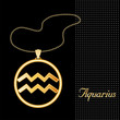 Aquarius Necklace and Chain, gold silhouette astrology symbol