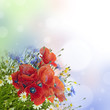 poppies, daisies ,cornflowers in bouquet and bokeh