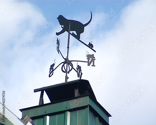 weather vane on roof. cat and mouse show wind direction