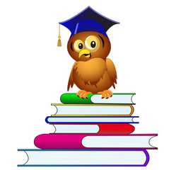 owl in hat sits on pile of the books