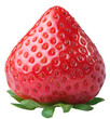 Appetizing strawberry.