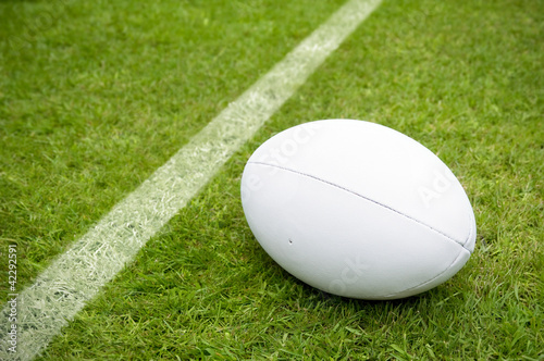 rugby ball near try line on rugby pitch