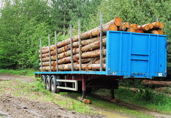 A Pile of Logs on a Flatbed Trailer