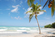 Fototapeten,south pacific,cuba,stranden,weiß