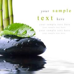 piedra con hoja verde y bambú