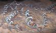 Leinwanddruck Bild - Borrelia burgdorferi