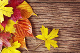Fototapety Colorful autumn leaves
