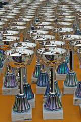 shimmering silver cups to the winners of the contests Awards