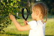 Little girl examining tree leaves through magnifying glass