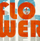 Flower. Retro grunge typographic poster. poster